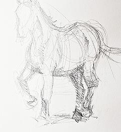 Malen Zeichnen Lernen Zeichnen Und Skizzieren Lernen Tiere