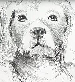 Malen Zeichnen Lernen Zeichnen Und Skizzieren Lernen