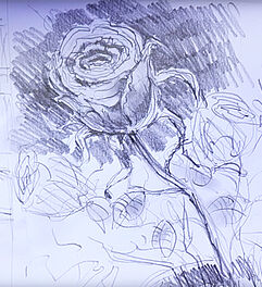 malen zeichnen lernen zeichnen und skizzieren lernen rose zeichnen sebastian gothe. Black Bedroom Furniture Sets. Home Design Ideas