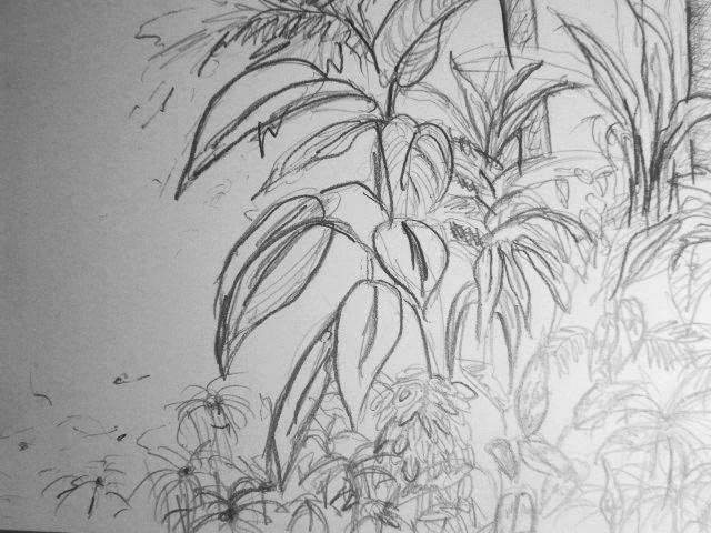 malenzeichnen lernen » malen lernen zeichnen